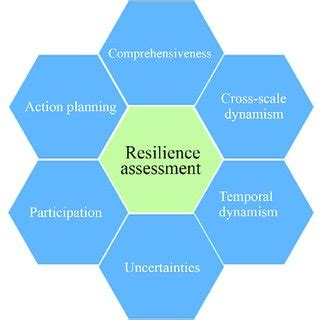 Research paper on resilience